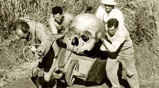 Institución Smithsonian admite a destruir miles de gigantes esqueletos humanos en principios de 1900